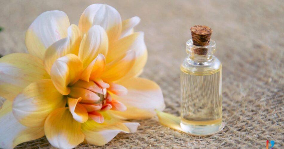 Parfum Non Alkohol Terbaik RekomendasiMerk.com